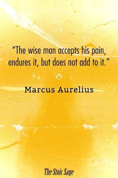"""""""The wise man accepts his pain, endures it, but does not add to it."""" - Marcus Aurelius"""