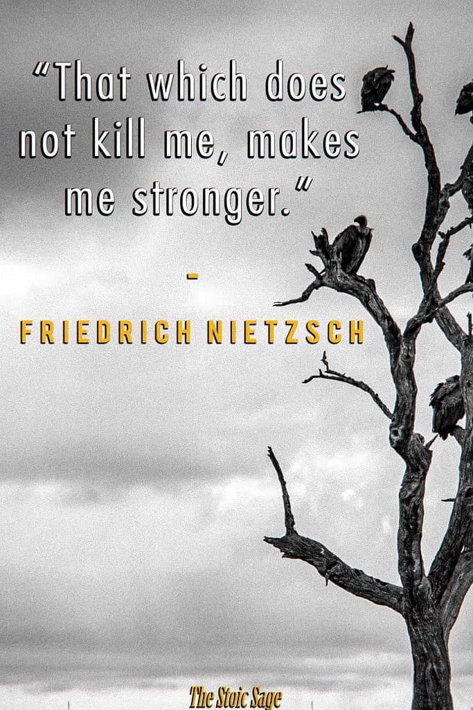 """""""That which does not kill me, makes me stronger."""" - Friedrich Nietzsch"""