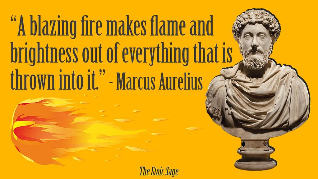 """""""Ablazing fire makes flame and brightness out of everything that is thrown into it."""" - Marcus Aurelius"""