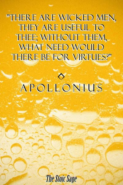 """""""There are wicked men - they are useful to thee; without them, what need would there be for virtues?"""" - Apollonius of Chalcedon"""