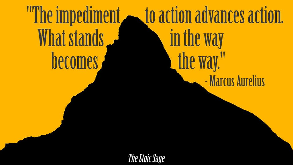 """""""The impediment to action advances action. What stands in the way becomes the way."""" - Marcus Aurelius"""
